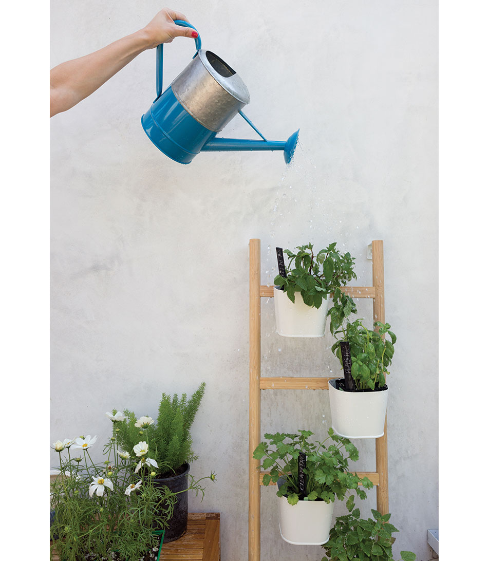 2_curel-watering-can